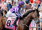ARLINGTON HEIGHTS, IL - AUGUST 13: Long Island Sound #8, ridden by Seamie Heffernan, during the post parade before the Secretariat Stakes at Arlington International Racecourse on August 13, 2016 in Arlington Heights, Illinois. (Photo by Jon Durr/Eclipse Sportswire/Getty Images)