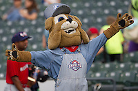 """Round Rock Express mascot """"Spike"""" before the Pacific Coast League baseball game against the Oklahoma City Redhawks on April 3, 2014 at the Dell Diamond in Round Rock, Texas. The Redhawks defeated the Express 7-6 in the season opener for both teams. (Andrew Woolley/Four Seam Images)"""