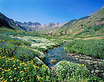 Stream in American Basin, San Juan Mountains, near Lake City, Colorado, .  John leads wildflower photo tours into American Basin and throughout Colorado. All-year long.