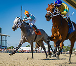 OLDSMAR, FL - JANUARY 21: The Monkey Monster #3 (blue cap), ridden by Edgard J. Zayas, crosses the finish line past, Chance Of Luck (orange hat), ridden by Erick D. Rodriguez, and wins the Pasco Stakes, on Skyway Festival Day at Tampa Bay Downs on January 21, 2017 in Oldsmar, Florida. (Photo by Douglas DeFelice/Eclipse Sportswire/Getty Images)