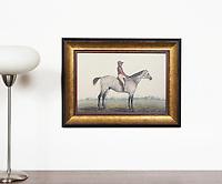 "Indian Jockey With A Whip, Digital Print, Framed Dims. 18"" x 23"" x 2"""