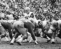 Frank Cosentino HamiltonTiger Cats quarterback 1965 Grey Cup. Copyright photograph Ted Grant/