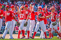 24 May 2015: Members of the Washington Nationals celebrate a victory over the Philadelphia Phillies at Nationals Park in Washington, DC. The Nationals defeated the Phillies 4-1 to take the rubber game of their 3-game weekend series. Mandatory Credit: Ed Wolfstein Photo *** RAW (NEF) Image File Available ***