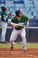 Daytona Tortugas shortstop Blake Trahan (7) squares to bunt during a game against the Tampa Yankees on August 5, 2016 at George M. Steinbrenner Field in Tampa, Florida.  Tampa defeated Daytona 7-1.  (Mike Janes/Four Seam Images)