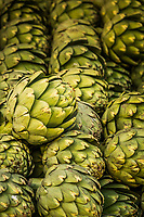 Three neat rows of artichokes with a lone, green head resting atop the space between two rows.