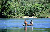 Mato Grosso, Brazil. Rikbaktsa (Canoeiro) Indians paddling a dugout canoe with densely forested riverbank.