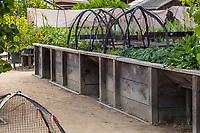 Wheelchair accessible raised beds; Gamble Garden, Palo Alto, California