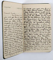 BNPS.co.uk (01202 558833)<br /> Pic: C&T Auctioneers/BNPS<br /> <br /> A poignant letter penned by a tragic British officer to his mother 'in the event of his death' weeks before he was killed on the battlefield has been unearthed 106 years on.<br /> <br /> Lieutenant Frank Stuart Shoosmith, of the 5th Battalion, Bedfordshire Regiment, kept her abreast of the disastrous Gallipoli campaign in 1915.<br /> <br /> He does not hide the horrors he witnessed as casualty numbers spiralled on the Allied side into the hundreds of thousands.<br /> <br /> In one heartbreaking passage, he tells his mother to 'take care' of his partner Ivy and 'help her to forget me'. Not long after, he was shot through the head while moving along the trench and killed on the spot.<br /> <br /> The book of his letters is being sold alongside a watchstrap containing Lt Shoosmith's photo his mother wore in his memory with C & T Auctions, of Ashford, Kent.