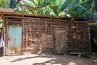 Tanzania.  Mto wa Mbu.  Farmer's House in Midst of a Banana Plantation.