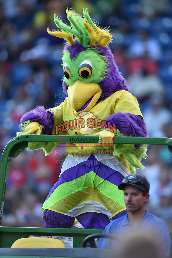 Bird Zerk performs at the South Atlantic League All Star Game on June 23, 2015 in Asheville, North Carolina. The North Division defeated the South 7-5(Tony Farlow/Four Seam Images)