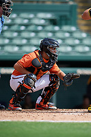 Baltimore Orioles catcher Jose Montanez (73) waits to receive a pitch in front of home plate umpire Ben Engstrang during a Florida Instructional League game against the Pittsburgh Pirates on September 22, 2018 at Ed Smith Stadium in Sarasota, Florida.  (Mike Janes/Four Seam Images)