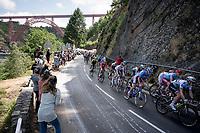 Stage 10: Saint-Flour to Albi(217km)<br /> 106th Tour de France 2019 (2.UWT)<br /> <br /> ©kramon