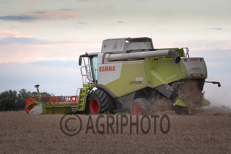 4.9.2020 Harvesting Spring barley in Lincolnshire<br /> ©Tim Scrivener Photographer 07850 303986<br />      ....Covering Agriculture In The UK.