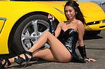 Sample-Corvette Mania-MillVelVette 2012