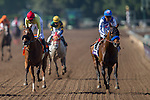 ARCADIA, CA - NOVEMBER 05: Drefong #2 (right), ridden by Martin Garcia wins the TwinSpires Breeders' Cup Sprint during day two of the 2016 Breeders' Cup World Championships at Santa Anita Park on November 5, 2016 in Arcadia, California. (Photo by Kaz Ishida/Eclipse Sportswire/Breeders Cup)