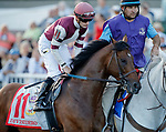 ARLINGTON HEIGHTS, IL - AUGUST 12: Divisidero #11, ridden by Julien Leparoux, during the post parade before the Arlington Million on Arlington Million Day at Arlington Park on August 12, 2017 in Arlington Heights, Illinois. (Photo by Jon Durr/Eclipse Sportswire/Getty Images)