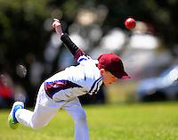 161203 Cricket - Wellington Junior Cricket