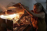 """A shop selling animals for sacrifice in popular religious ceremonies such as candomble and  voodo in Caracas, part of an  essay by Howard Yanes The Borders of Faith in Venezuela. Howard says :""""This are religions or beliefs from which no one speaks clearly but everydoby  knows they exist. Everybody pretends they are irrelevant, some of them even could laugh about this beliefs  but nobody would dare to remove those pieces of voodoo ceremony you can find at any cementery, or to close down the illegal shops selling animals for sacrifice."""""""