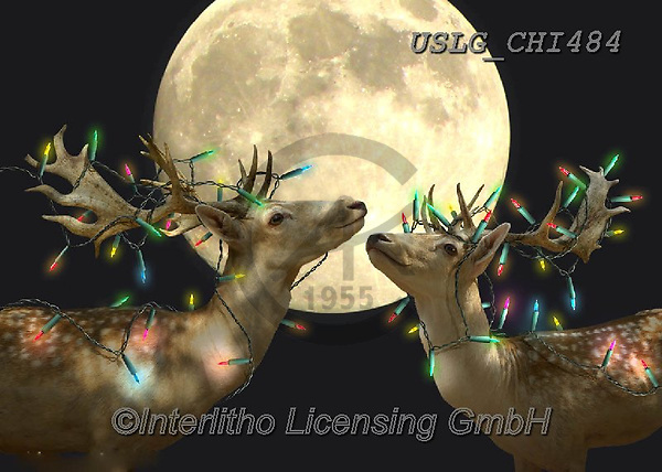 CHIARA,CHRISTMAS ANIMALS, WEIHNACHTEN TIERE, NAVIDAD ANIMALES, paintings+++++,USLGCHI484,#XA# ,funny ,funny