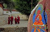 Monasteries and Buddhist Monks in Tibet
