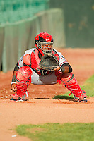 Billings Mustangs catcher Wagner Gomez (34) warms up his pitcher in the bullpen prior to the game against the Grand Junction Rockies at Suplizio Field on July 24, 2012 in Grand Junction, Colorado.  The Rockies defeated the Mustangs 4-3.  (Brian Westerholt/Four Seam Images)