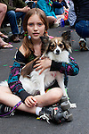 A young rollerskater takes a break with her papillon, Seattle, Washington, USA.