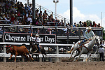 Cheyenne, Wyoming-7/26/2009-Photo by Rick Davis - PRCA cowboy Scott Snedecor of Uvalde, Texas turned in a short go round time of 13.7 seconds in the Steer Roping event during final round action at the 113th annual Cheyenne Frontier Days Rodeo. Scott posted a three run total of 41.8 seconds, which earned him the 2009 Cheyenne Steer Roping Championship.