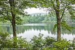 The Quabbin Reserve, New Salem, MA
