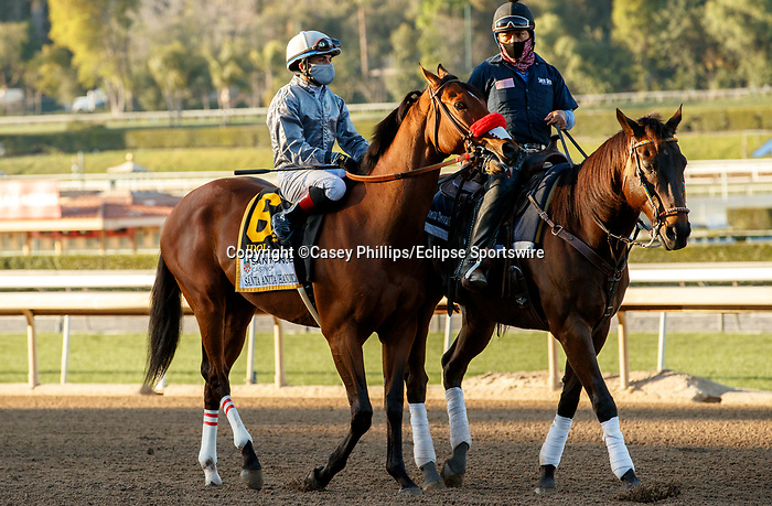 ARCADIA, CA  MARCH 6: #6 Idol, ridden by Joel Rosario, in the post parade of the Santa Anita Handicap (Grade l) on March 6, 2021 at Santa Anita Park in Arcadia, CA.   (Photo by Casey Phillips/EclipseSportswire/CSM)