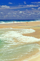 Beautiful beach on the north shore of Oahu