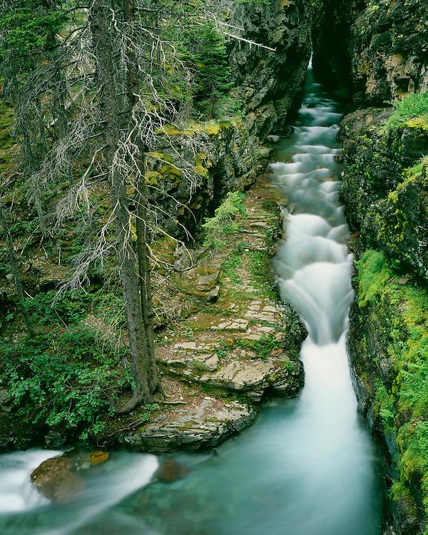 Bearing Creek flowing through Sunrift Gorge; Glacier National Park, MT
