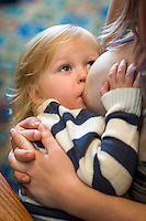 Close-up of a child of about 29 months breastfeeding while looking at the camera.<br /> Lancashire, England, UK<br /> <br /> Date Taken:<br /> 07-01-2015<br /> <br /> © Paul Carter / wdiip.co.uk
