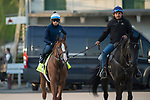 LOUISVILLE, KY - APRIL 28: Good Magic, trained by Chad Brown, at Churchill Downs on April 28, 2018 in Louisville, Kentucky. (Photo by Eric Patterson/Eclipse Sportswire/Getty Images)