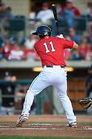 Billings Mustangs Leonardo Seminati (11) at bat during a Pioneer League game against the Grand Junction Rockies at Dehler Park on August 15, 2019 in Billings, Montana. Billings defeated Grand Junction 11-2. (Zachary Lucy/Four Seam Images)