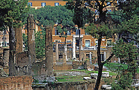 Ruins of the Largo di Torre Argentina, Rome, Italy.