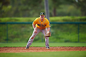 Siena Saints third baseman Brian Kelly (14) during a game against the Pittsburgh Panthers on February 24, 2017 at Historic Dodgertown in Vero Beach, Florida.  Pittsburgh defeated Siena 8-2.  (Mike Janes/Four Seam Images)