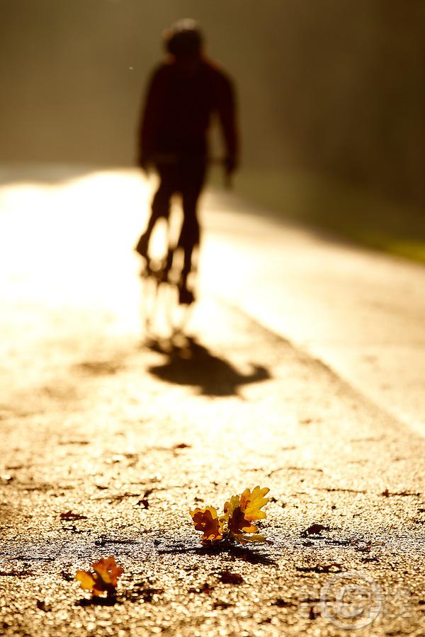 Sam Behr  riding Carrera road bike , Surrey  , November 2011 pic copyright Steve Behr / Stockfile