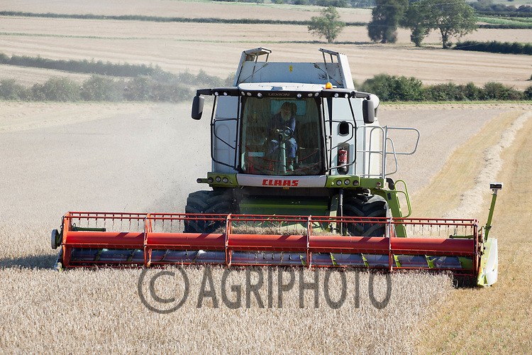 9.9.2020 Harvesting Spring Barley in Lincolnshire <br /> ©Tim Scrivener Photographer 07850 303986<br />      ....Covering Agriculture In The UK.