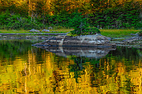 Cedar Lake, West Canada Lakes Wilderness Area, Adirondack Forest Preserve, New York