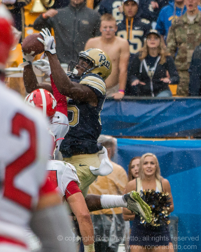 Pitt wide receiver Jester Weah makes an 11-yard touchdown catch in overtime. The Pitt Panthers defeated the Youngstown State Penguins 28-21 in overtime at Heinz Field, Pittsburgh, Pennsylvania on September 02, 2017.