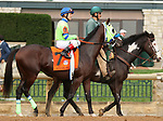 """October 07, 2018 : #7 The Sicarii and jockey Jon Court  in the 1st running of The Indian Summer $200,000 """"Win and You're In Breeders' CupJuvenile Turf Sprint Division"""" for trainer Mark Casse and owner John Oxley  at Keeneland Race Course on October 07, 2018 in Lexington, KY.  Candice Chavez/ESW/CSM"""
