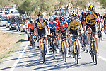 Robert Gesink, Steven Kruisjwijk (NED) and Red Jersey Primoz Roglic (SLO) Jumbo-Visma during Stage 7 of La Vuelta d'Espana 2021, running 152km from Gandia to Balcon de Alicante, Spain. 20th August 2021.     <br /> Picture: Luis Angel Gomez/Photogomezsport | Cyclefile<br /> <br /> All photos usage must carry mandatory copyright credit (© Cyclefile | Luis Angel Gomez/Photogomezsport)
