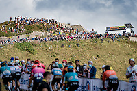 almost finished up the Puy Mary <br /> <br /> Stage 13 from Châtel-Guyon to Pas de Peyrol (Le Puy Mary) (192km)<br /> <br /> 107th Tour de France 2020 (2.UWT)<br /> (the 'postponed edition' held in september)<br /> <br /> ©kramon