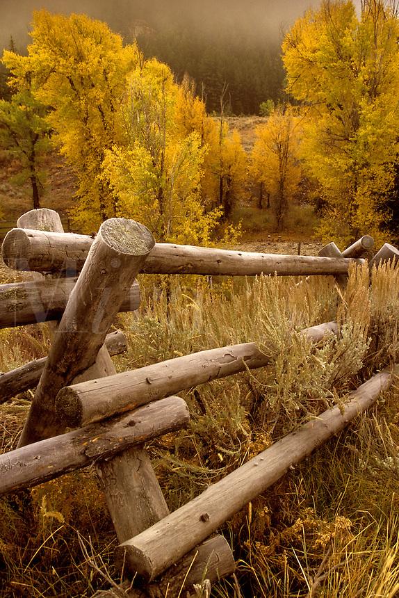 Jackson Fense.  Grand Teton National Park, Jackson Hole, Wyoming,