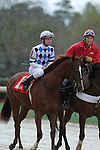 HOT SPRINGS, AR - MARCH 12: Jockey Calvin Borel aboard Cosmic Evolution (1) during post parade of the Honeybee Stakes at Oaklawn Park on March 12, 2016 in Hot Springs, Arkansas. (Photo by Justin Manning)