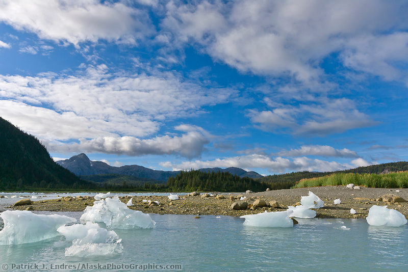 Stranded icebergs in Nellie Juan Lagoon, Prince William Sound, southcentral, Alaska.