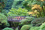 Moon Bridge, Portland, Oregon.  The Japanese Garden in Portland is a 5.5 acre respit.  Said to be one of the most authentic Japanese Garden's outside of Japan, the rolling terrain and water features symbolize both peace and strength.