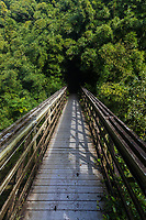 A boardwalk along the Pipiwai Trail in Haleakala National Park, Kiphahulu district, Maui.