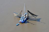 Elbfischer: EUROPA, DEUTSCHLAND, HAMBURG, NIEDERSACHSEN, SCHLESWIG HOLSTEIN(EUROPE, GERMANY), 11.04.2011:Elbfischer bei Hamburg, Niedersachsen, Schleswig-Holstein,  Elbe, Oste,  Kutter, Fisch, Netz, Boot, liegt vor Anker und faengt Fische, ansichten, at the Elbe river, auf fischfang, beruf, boat, boats, boot, boote, elbe, elbe river, elbfischer, elbgewaesser, fang, fangnetz, fangnetze, fische, fischen, fischer, fischerboot, fischernetz, fischernetze, fischfang, fish, fisher, fisherman, fishing boat, flew, flue, gewaesser, hafen, harbor, in der elbe, landscape, netz, netze, orte, port, river, schiff, schiffahrt, schiffe, schifffahrt, schleswig holstein, ship, selten, letzter der Zunft, Ausgestorben, Umweltverschmutzung, rahr, Wasserverschmutzung, Lebensmittel, ships, Air, Luftbild, Aufwind-Luftbilder..c o p y r i g h t : A U F W I N D - L U F T B I L D E R . de.G e r t r u d - B a e u m e r - S t i e g 1 0 2, .2 1 0 3 5 H a m b u r g , G e r m a n y.P h o n e + 4 9 (0) 1 7 1 - 6 8 6 6 0 6 9 .E m a i l H w e i 1 @ a o l . c o m.w w w . a u f w i n d - l u f t b i l d e r . d e.K o n t o : P o s t b a n k H a m b u r g .B l z : 2 0 0 1 0 0 2 0 .K o n t o : 5 8 3 6 5 7 2 0 9.C o p y r i g h t n u r f u e r j o u r n a l i s t i s c h Z w e c k e, keine P e r s o e n l i c h ke i t s r e c h t e v o r h a n d e n, V e r o e f f e n t l i c h u n g  n u r  m i t  H o n o r a r  n a c h M F M, N a m e n s n e n n u n g  u n d B e l e g e x e m p l a r !.