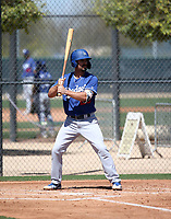 Luke Heyer - Los Angeles Dodgers 2019 spring training (Bill Mitchell)